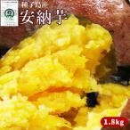 〈送料無料〉種子島産 【安納芋 2kg】 (大・中・小混合サイズ6�10本)蜜芋  [※他商品との同梱不可][※常温便]