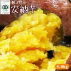 〈送料無料〉種子島産 【安納芋 5kg】 蜜芋  [※他商品との同梱不可][※常温便]