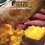 〈送料無料〉種子島産  【安納芋 10kg】  蜜芋  [※他商品との同梱不可][※常温便]