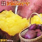 送料無料 さつまいも ワケアリ【茨城県産さつまいも シルクスイート 訳あり 約5kg】(S〜2L) [※他商品との同梱不可][※常温便]