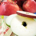 リンゴ ふじ・王林・つがる フリーズドライ 青森 林檎 【ソフトりんご2枚×3】1袋3P入(1P×2枚)
