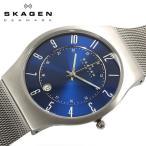 SKAGEN スカーゲン デンマーク 腕時計 メンズウォッチ 233XLTTN