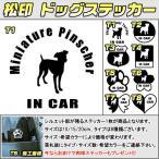 【松印】 ドッグステッカー 肉球ステッカー付き ミニチュア ピンシャー Miniature Pinscher 3サイズ 8タイプ 60カラー In Car dog
