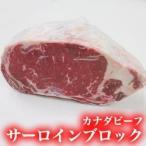 今だけスパイス付!【送料無料】サーロインブロック1kg