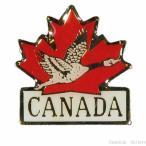 カナダグースの画像