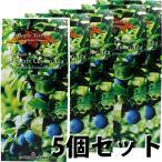 ブルーベリー 紅茶 ブルーベリーティー 2g(15個) ×5箱 お得セット ティーバッグ カナダ土産 芳醇で高級 ブルーベリー セイロン フレーバー