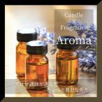 贅沢な香り フレグランスオイル 各香り (1)【キャンドル ワックスサシェ アロマ フレグランス オイル】