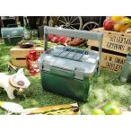 スタンレー ランチクーラーボックス 6.6リットル アメリカン雑貨 アメリカ雑貨の画像