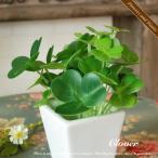 観葉植物 造花 クローバー 四角 S アレンジ 花瓶 花器 CT触媒 人工植物 消臭 抗菌 防菌 インテリア アートフラワー ギフト