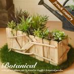 多肉植物 観葉植物 造花 Cactus アレンジ 鉢植え 花瓶 花器 人工植物 インテリア アートフラワー ギフト