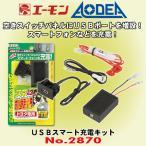 エーモン工業 No.2870 USBスマート充電キット 主にトヨタ車用