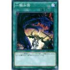 遊戯王カード 一騎加勢 / クラッシュ・オブ・リベリオン(CORE) / シングルカード