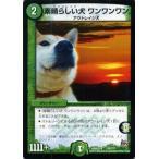 デュエルマスターズ 素晴らしい犬(ワンコレイジ) ワンワンワン(実写カード)