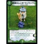 ショッピングデュエルマスターズ デュエルマスターズ 素晴らしい犬(ワンコレイジ) ワンワンワン(実写カード)/革命 超ブラック・ボックス・パック (DMX22)/ デュエマ