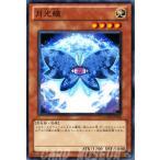 遊戯王カード 月光蝶 / ギャラクティック・オーバーロード(GAOV) / シングルカード