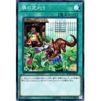 遊戯王カード 隣の芝刈り(スーパーレア) ザ・レアリティ・コレクション 20th ANNIVERSARY EDITION (RC02)