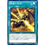 遊戯王カード 煉獄の死徒 / ザ シークレット オブ エボリューション(SECE) / シングルカード