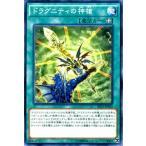 遊戯王カード ドラグニティの神槍 / ザ シークレット オブ エボリューション(SECE) / シングルカード