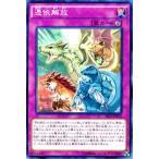遊戯王カード 憑依解放 / ザ シークレット オブ エボリューション(SECE) / シングルカード