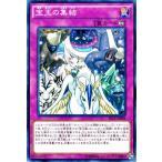 遊戯王カード 宝玉の集結 / ザ シークレット オブ エボリューション(SECE) / シングルカード