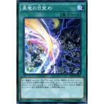 遊戯王カード 真竜の目覚め シャイニング・ビクトリーズ (SHVI) シングルカード SHVI-JP061-N