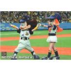 【送料無料】カルビー2008 プロ野球チップス マスコットカード No.M-12 ネッピー/リプシー