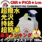 ガラスコーティング剤 業務用 比較 車 ボディ 撥水剤 ガラスコート剤 イージーグラスコート