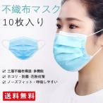 マスク 不織布マスク 10枚入 三 層構造 花粉症対策 男女兼用 ホ コリ 対策 使いきり 使い捨て 立 体 プリーツタイプ ブルー ノー ズワイヤー