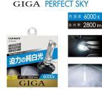 【6000K】純正HIDヘッドライト交換用バルブ2個set/コペン/ダイハツ/L880K/H14.5-H26.5/D2S/D2R共通/GIGA