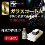 ガラスコーティング剤 輝 ガラスコートα 200ml 大容量タイプ 10台分