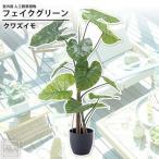 クワズイモ : フェイクグリーン 室内用 人工観葉植物 おしゃれ インテリアグリーン フェイクグリーン クワズイモ GRN-16