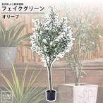 オリーブ : フェイクグリーン 室内用 人工観葉植物 おしゃれ インテリアグリーン フェイクグリーン オリーブ GRN-17