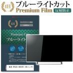 東芝 REGZA 49G20X 強化ガラス と 同等の 高硬度9H  液晶TV 保護フィルム