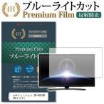レボリューション ZM-4003SR 強化 ガラスフィルム と 同等の 高硬度9H ブルーライトカット 反射防止 液晶TV 保護フィルム