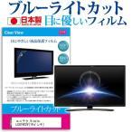 ユニテク Visole LCU1902V[19インチ]ブルーライトカット 反射防止 液晶保護フィルム