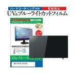東芝 REGZA 55C350X 55型 液晶テレビ 保護 フィルム パネル ブルーライトカット 液晶 55インチ 反射防止 画面 モニター 破損 防止