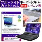 マウスコンピューター NEXTGEAR-NOTE i7900 シリーズ[17.3インチ] ブルーライトカット 指紋防止 液晶保護フィルム と キーボードカバー セット