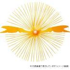 ハヤブサ HR215 集寄カニラバ6