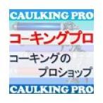 オート化学 CP-1 カラープライマー 1L×1缶【CP-1と同時注文のみ購入可】