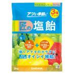 サラヤ Gains 匠の塩飴3種 アソート味 マスカット・レモン・スイカ 2kg 27670