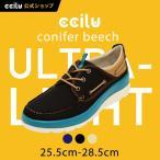靴 メンズ 【送料無料】 デッキシューズ キャンバス コニファー ビーチ conifer beech