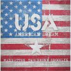 Ambiente オランダ ペーパーナプキン アメリカンドリーム AMERICAN DREAM 13307850 バラ売り2枚1セット デコパージュ ドリパージュ