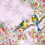 Ambiente オランダ ペーパーナプキン Bird Watching Lila 13309126 バラ売り2枚1セット デコパージュ ドリパージュ