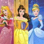 2枚1セット ディズニープリンセス DisneyPrincess PRINCESS DREAM BIG アメリカ MADE IN USA ペーパーナプキン 紙ナフキン
