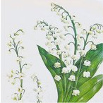 IHR ドイツ ペーパーナプキン スズラン すずらん 白い花 FESTIVE MAY white バラ売り2枚1セット L-546290 デコパージュ ドリパージュ