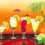 Maki ポーランド ペーパーナプキン cocktails バラ売り2枚1セット SLOG-023701 デコパージュ ドリパージュ