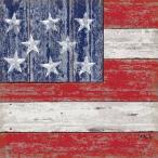 PPDドイツ ペーパーナプキン Lunch napkins アメリカ合衆国の国旗 星条旗 Vintage America バラ売り2枚1セット L-133-2006