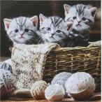 CCPOPO・シーシーポポ・Yahoo!店で買える「1枚バラ売りペーパーナプキン ti-flair ドイツ 3匹の猫 ネコ Striped Kittens 371056 デコパージュ ドリパージュ」の画像です。価格は35円になります。