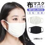 マスク 大人用 2枚入り 布マスク 洗える ウレタンマスク 立体マスク 予防 花粉 かぜ ウイルス 快適マスク 送料無料ms-018