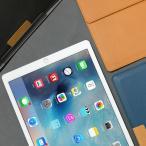 iPad Pro ケース バッグ型 ポーチ araree Stand Clutc